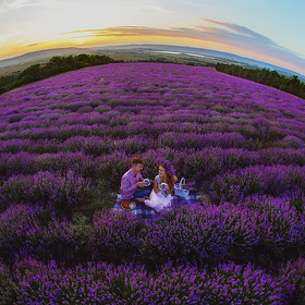 Love Story in Crimea. Lavender field.